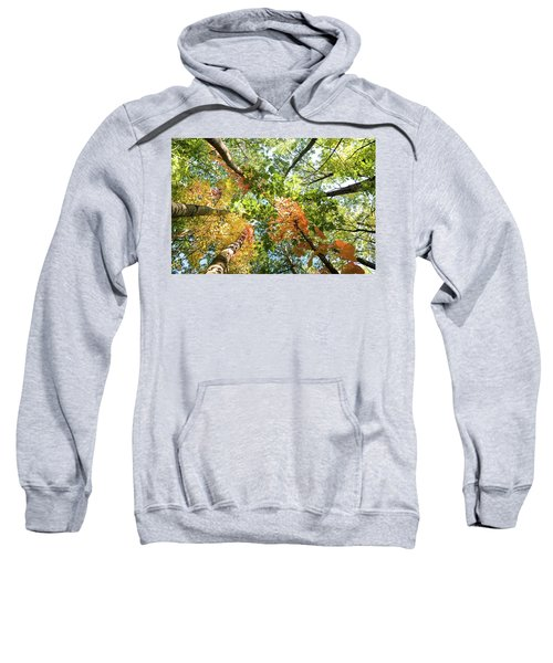 Canadian Foliage Sweatshirt