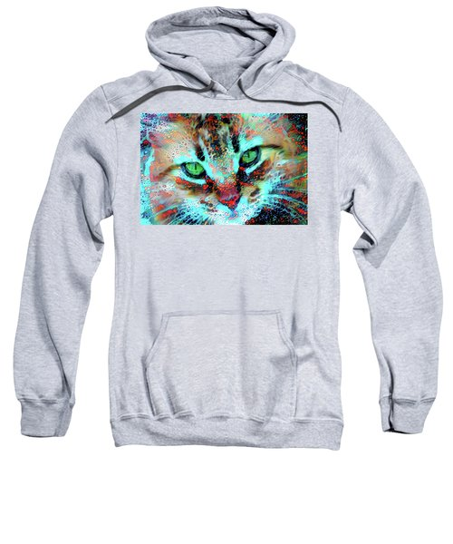 Candy The Colorful Green Eyed Cat Sweatshirt