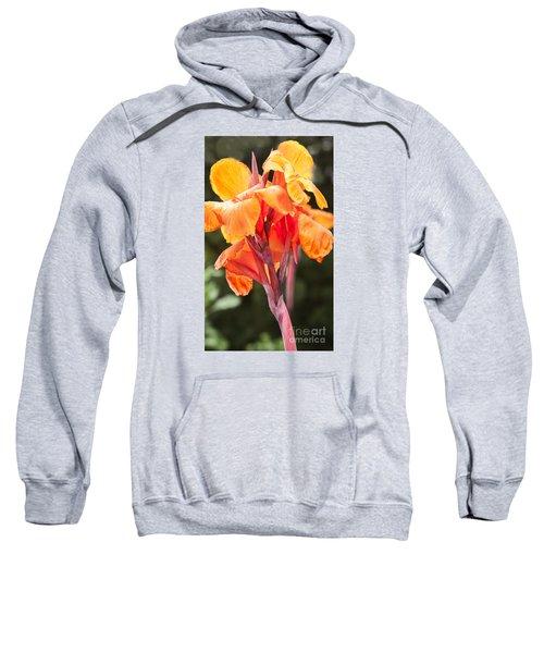 Canna Sweatshirt