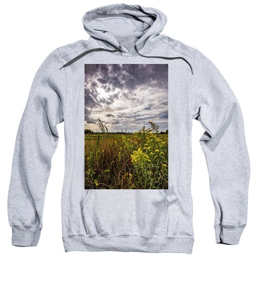 Cape Cod Marsh 4 Sweatshirt