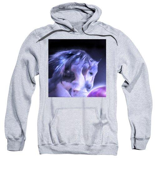 Captured Sweatshirt