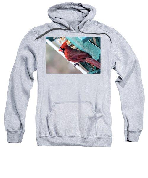 Cardinal Close Up Sweatshirt