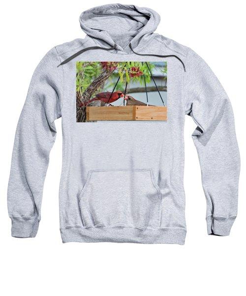 Cardinal Feeding  Sweatshirt