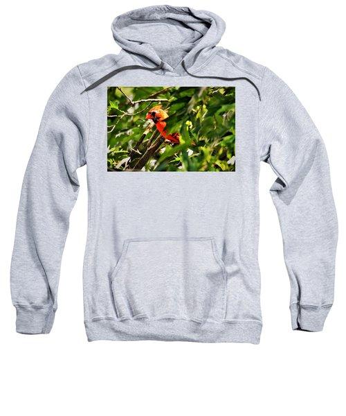 Cardinal In Tree Sweatshirt