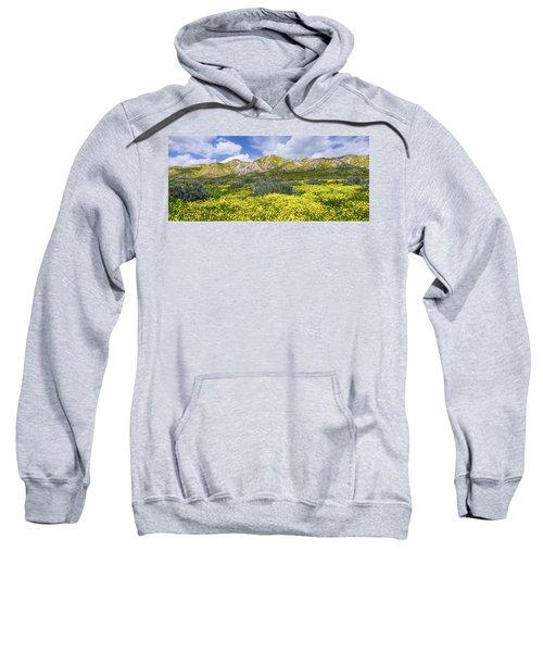 Carrizo Spring Sweatshirt