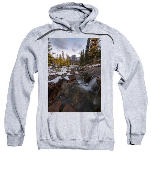 Cascading Sweatshirt