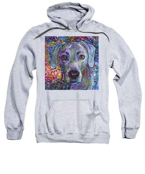 Cash The Blue Lacy Dog Closeup Sweatshirt