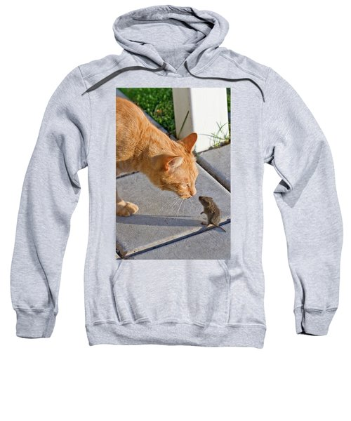 Cat And Mouse Sweatshirt