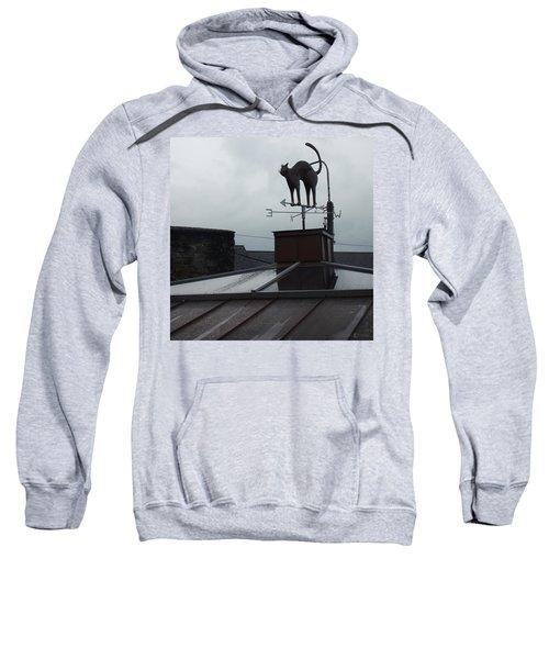 Cat On A Cool Tin Roof Sweatshirt