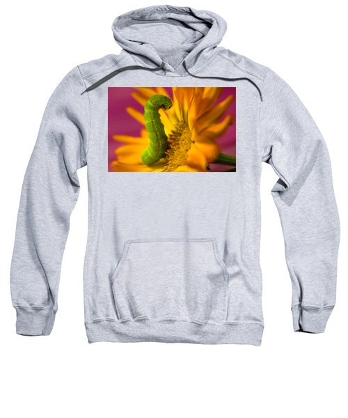 Caterpillar In Flower Sweatshirt