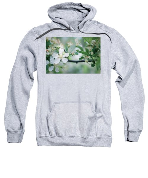 Caterpillar On A Tree Blossom Sweatshirt