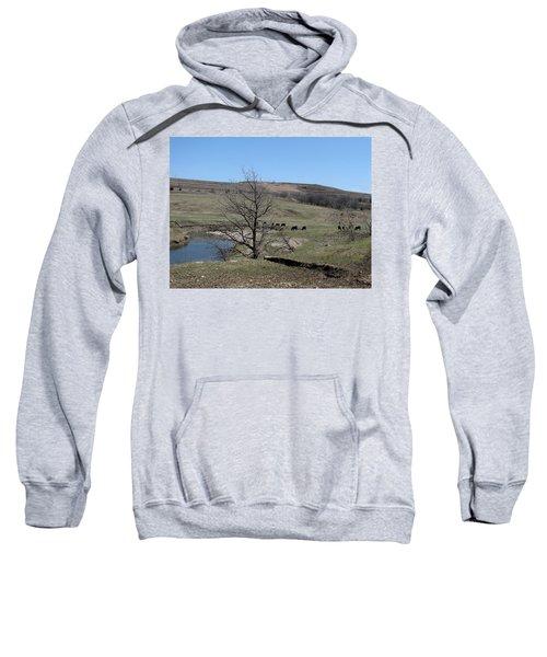 Cattle Along Deep Creek Sweatshirt