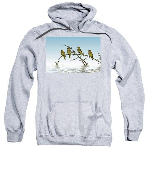 Cedar Waxwings On A Branch Sweatshirt