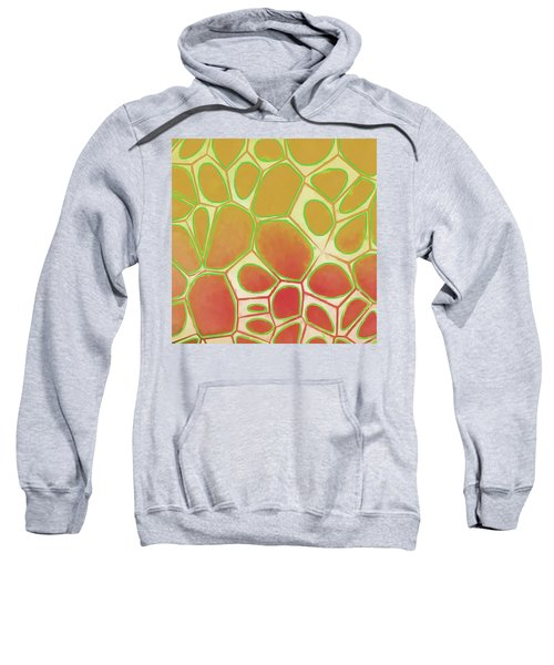 Cells Abstract Five Sweatshirt