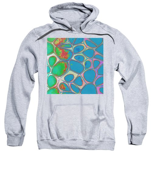 Cells Abstract Three Sweatshirt