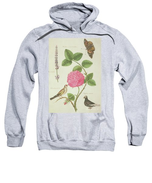 Centifolia Rose, Lavender, Tortoiseshell Butterfly, Goldfinch And Crested Pigeon Sweatshirt by Nicolas Robert