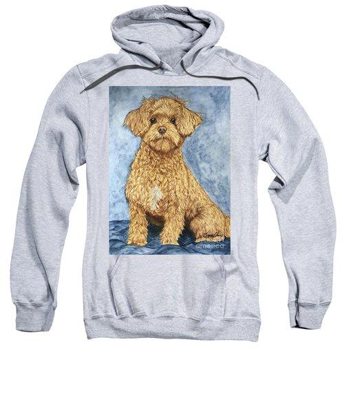 Chase The Maltipoo Sweatshirt