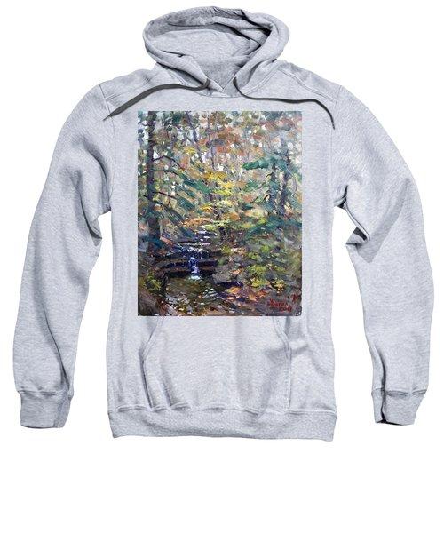 Chautauqua Gorge State Forest Sweatshirt