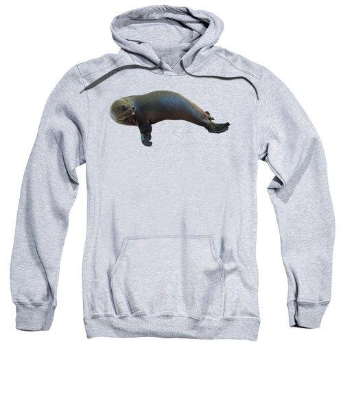 Cheeky Seal Sweatshirt