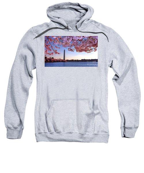 Cheery Cherry Dc Sweatshirt