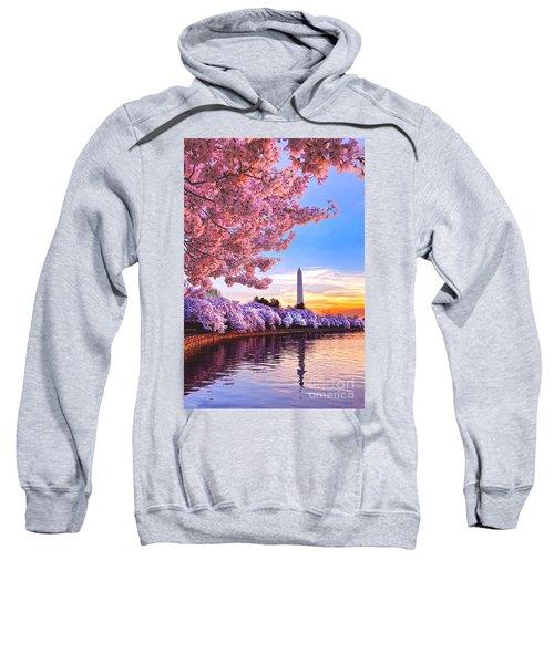 Cherry Blossom Festival  Sweatshirt