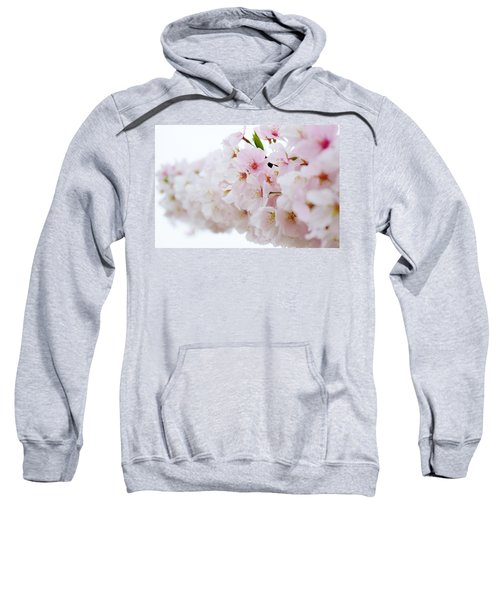 Cherry Blossom Focus Sweatshirt