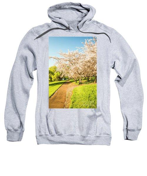 Cherry Blossom Lane Sweatshirt
