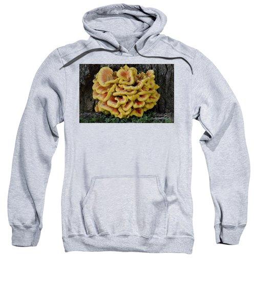 Chicken Of The Woods Sweatshirt