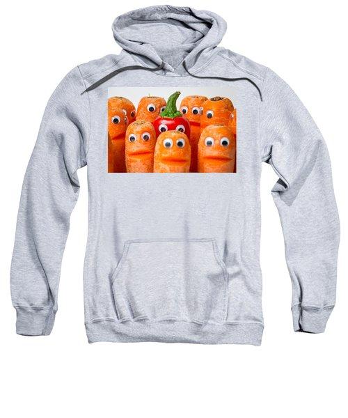 Chilli Hiding. Sweatshirt