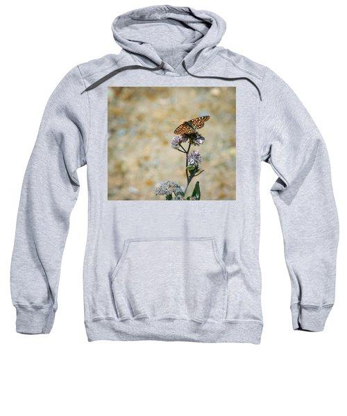 Chillin' In Color Sweatshirt