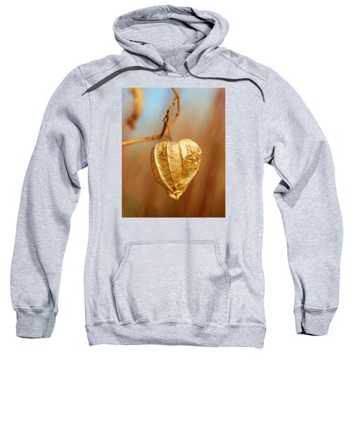 Ground Cherry Sweatshirt