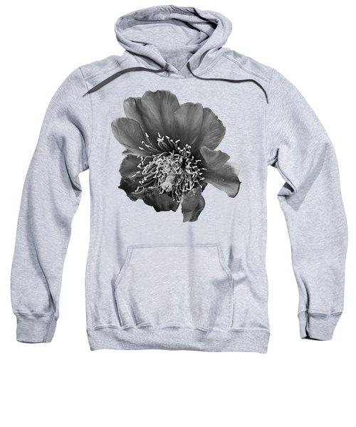 Cholla Flower H61 Sweatshirt