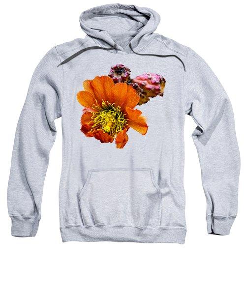 Cholla Flower Op60 Sweatshirt