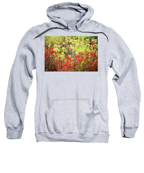 Christmas Cactii Sweatshirt