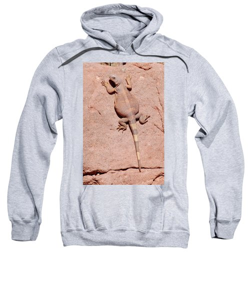 Sweatshirt featuring the photograph Chuckwalla, Saurolamus Ater by Breck Bartholomew