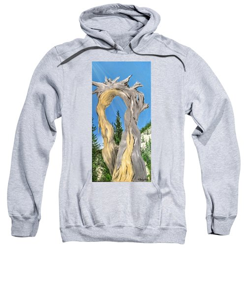 Church Window Sweatshirt