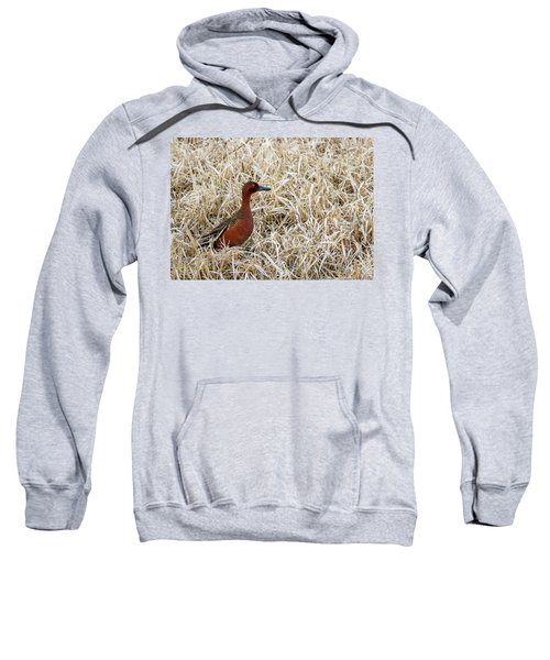 Cinnamon Teal Sweatshirt