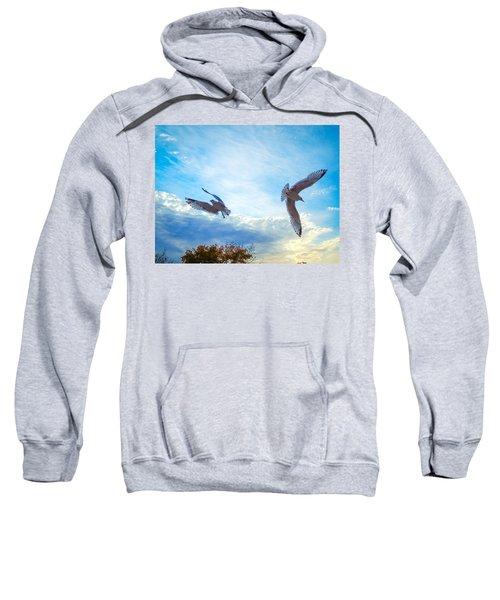 Circling Wings  Sweatshirt