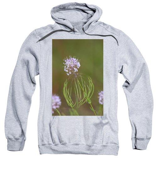 Clasping Warea Sweatshirt