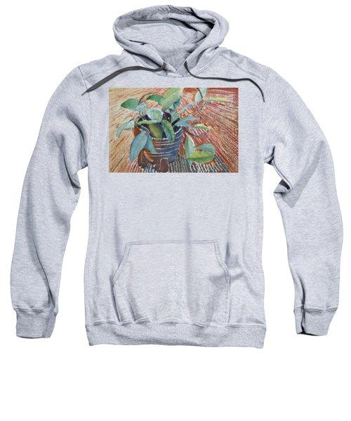 Clay Pot Sweatshirt