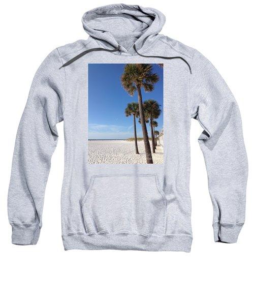 Clearwater Palms Sweatshirt