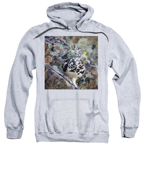 Cliffside Showoff Sweatshirt