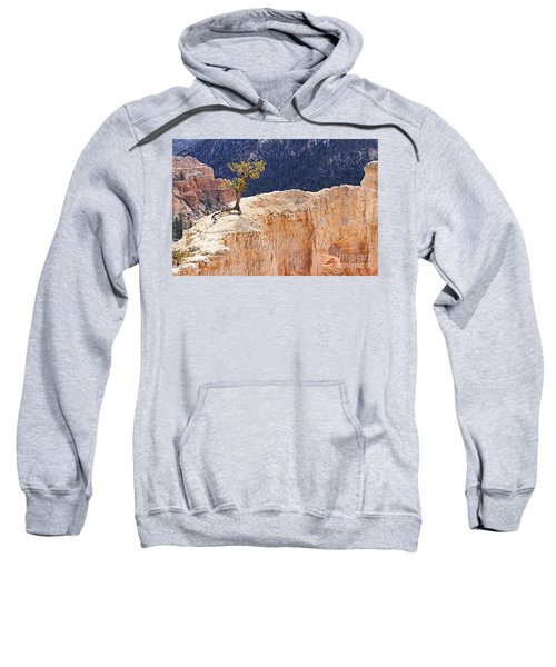 Clinging To The Top Of The Wall Sweatshirt