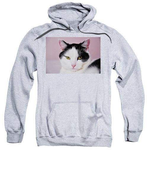 Cloe Sweatshirt