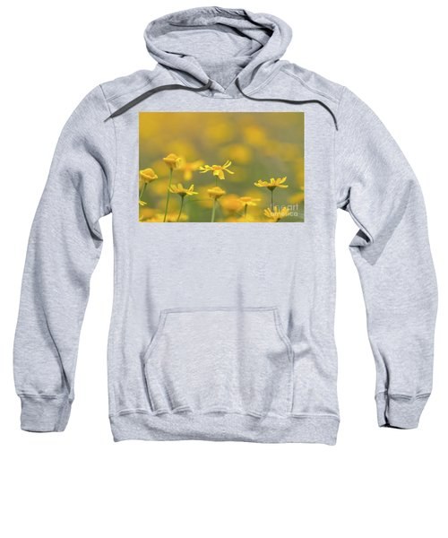 Close Up Of Yellow Flower With Blur Background Sweatshirt