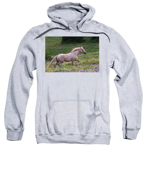 Cloud- Wild Stallion Of The West Sweatshirt