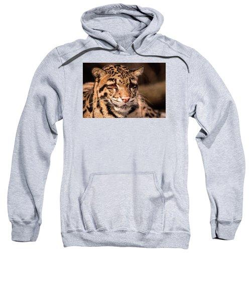 Clouded Leopard II Sweatshirt