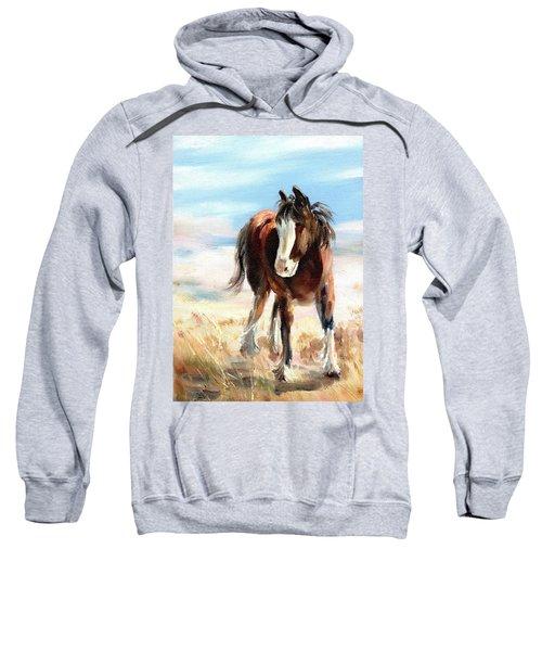 Clydesdale Foal Sweatshirt