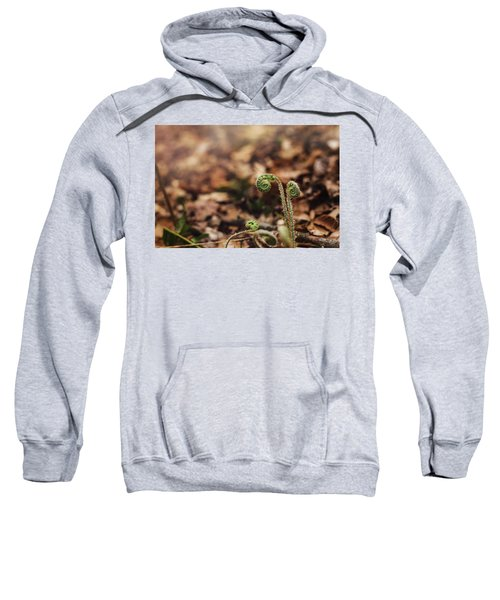 Coiled Fern Among Leaves On Forest Floor Sweatshirt