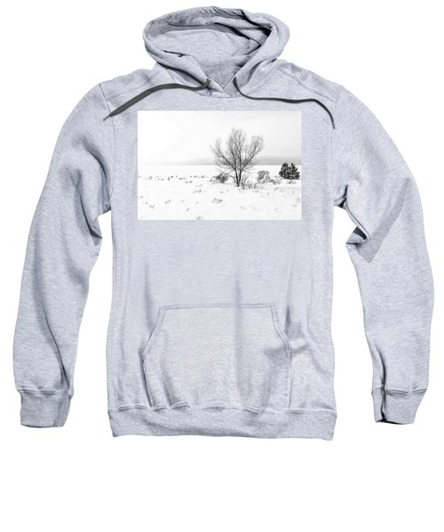 Cold Loneliness Sweatshirt